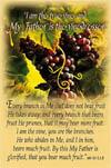 27779 - 'I am the Vine..